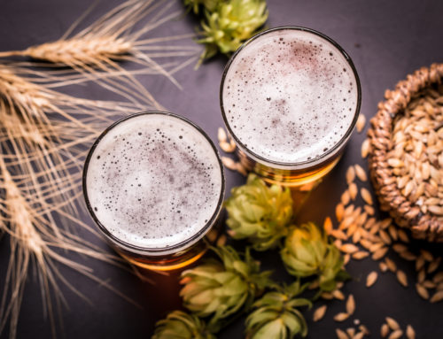 Your Ultimate Beer Guide: All The Different Kinds of Beer Explained